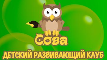 Детский развивающий клуб «Сова»